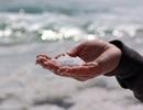 90% muối ăn mà chúng ta dùng có thể đã nhiễm vi nhựa!