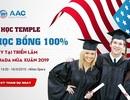 Đại học Temple cấp học bổng 100% ngay tại triển lãm 50 trường Mỹ & Canada