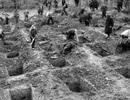 Phát hiện hàng trăm vật dụng ở các điểm thảm sát Quốc xã