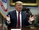 """Tổng thống Trump lệnh cấm bay """"ngay lập tức"""" với Boeing 737 Max"""
