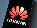 Đề phòng cấm vận từ Mỹ, Huawei phát triển hệ điều hành riêng để thay thế Android, Windows