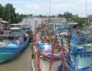 """Hàng loạt thiết bị giám sát hành trình tàu cá mất kết nối, Cà Mau """"hỏa tốc"""" xử lý"""