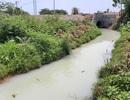 """Nước thải trắng đục, hôi thối từ khu công nghiệp """"xả thẳng"""" vào sông Cầu Đỏ"""