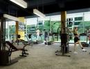 Trung tâm thương mại tại chung cư ế ẩm chuyển sang cho thuê làm phòng gym, mẫu giáo