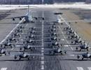 """Phi đội 24 máy bay chiến đấu F-22 của Mỹ tập trận """"Voi đi bộ"""""""