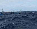 Chìm tàu chở hàng ra đảo Lý Sơn