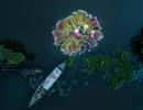 Tác phẩm xuất sắc của người Việt đạt giải Nhất trong cuộc thi ảnh quốc tế