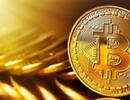 """Tiền """"ảo"""" tăng giá mạnh, nhà đầu tư Việt vẫn chưa đủ bù lỗ"""