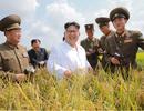 """Cơ hội vàng cho các nhà đầu tư """"đánh thức"""" tiềm năng của Triều Tiên"""