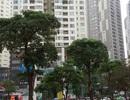 """Thủ tướng yêu cầu xử lý vụ xin """"nhồi"""" thêm tòa 18 tầng vào Khu đô thị Trung Hòa – Nhân Chính"""