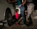 Những tấm ảnh truyền cảm hứng nhất trong Cuộc thi ảnh báo chí quốc tế 2019