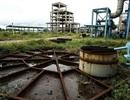 """Không được giải cứu, nguy cơ phá sản Gang thép Thái Nguyên là """"hiện hữu"""""""