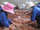 Thanh Hóa: Chi 7 tỷ đồng đào tạo nghề lao động nông thôn, người khuyết tật