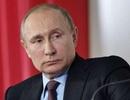 Ông Putin ngỏ lời giúp Pháp xây dựng lại Nhà thờ Đức Bà Paris