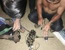 Mang súng điện đi trộm chó trong đêm, bị người dân vây bắt