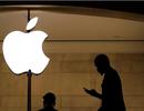 """Apple lên tiếng trong vụ kiện đòi 1 tỷ USD của """"nạn nhân"""" bắt nhầm"""