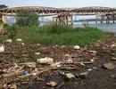 Đà Nẵng: Công trình đang thi công có cửa xả thải ra sông Hàn bốc mùi hôi