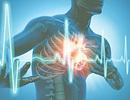 Rối loạn nhịp tim và những cái chết bất ngờ
