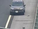 Tóm gọn xe đi ngược chiều trên đường cao tốc