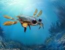 Phát hiện hoá thạch loài cua kì quái niên đại 95 triệu năm