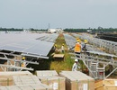 Bất cập của Luật Quy hoạch: Hàng loạt dự án điện sạch đứng trước nguy cơ mất ưu đãi