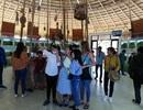 Kỳ nghỉ lễ 30/4-1/5, Đồng Tháp đón gần 97.000 lượt khách