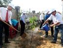 Quảng Nam: Phát động Tuần lễ Quốc gia nước sạch và vệ sinh môi trường năm 2019
