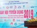 Trường đại học Công nghiệp Việt Trì tổ chức ngày hội tuyển dụng, tư vấn hướng nghiệp năm 2019