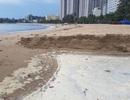 """Nha Trang: Bãi biển ô nhiễm nặng khiến du khách """"chạy mất dép"""""""