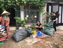 Phụ nữ Đà Nẵng với nhiều mô hình bảo vệ môi trường