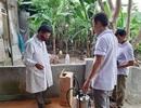 Vụ 3 người tử vong ở Hà Tĩnh: Gửi mẫu nghi tác nhân gây bệnh ra Viện sốt rét