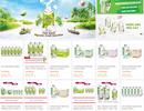 Thương mại điện tử - Hướng đi mới cho sản phẩm dừa Bến Tre