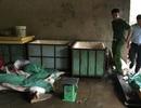 Bắt gần 1,3 tấn thịt heo thối ở ổ dịch tả chuẩn bị tung ra thị trường