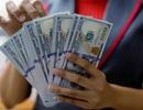 """USD """"tăng nóng"""" tuần qua: Việt Nam vẫn còn nhiều công cụ để ổn định tỷ giá!"""