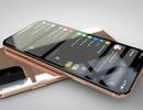 """Không chịu """"kém cạnh"""", iPhone XI và XI Max sẽ có tính năng sạc ngược"""