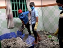 Khởi tố vụ 2 người bị sát hại, đổ bê tông phi tang