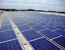 Quá thiếu nhân lực nghiệm thu dự án điện mặt trời, EVN tái ký hợp đồng với cán bộ nghỉ hưu!