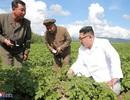 Triều Tiên thừa nhận hạn hán khủng khiếp nhất trong một thế kỷ