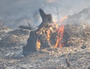 2 vụ cháy rừng liên tiếp tại Thừa Thiên Huế trong ngày nóng hơn 40 độ C