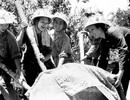 Nghe lại những giai điệu xúc động về con đường huyền thoại Trường Sơn