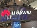 """Mỹ """"xoa dịu"""" lệnh cấm với Huawei?"""