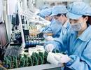 Việt Nam chưa tạo được lợi thế từ năng suất lao động