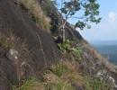 Phát hiện một thi thể đang phân hủy trên vách đá