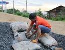 Đắk Nông: Đường chưa làm xong đã hỏng, dân nghi xi măng kém chất lượng