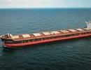 Cảng Hòn Nét đón tàu hàng rời có tải trọng lớn nhất từ trước tới nay vào làm hàng