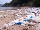"""Phú Yên: Vịnh Vũng Rô đang """"chết dần chết mòn"""" vì rác thải nhựa!"""
