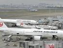 Nhật Bản tăng án phạt phi công sử dụng đồ uống có cồn trước chuyến bay
