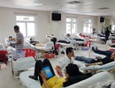 Huy động hàng trăm đơn vị máu và tiểu cầu trong thanh niên