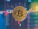 Bitcoin vượt ngưỡng kỷ lục 13 tháng, nhà đầu tư phấn khích