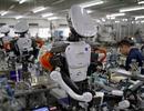 Tương lai, robot sẽ thay thế hoàn toàn người lao động?